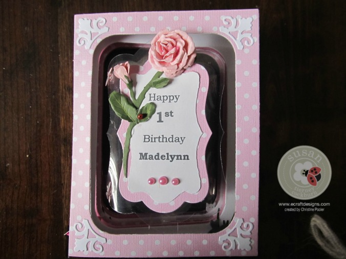 Madelyn 1st Bday  z  03122015