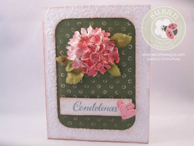 Strawberry Hydrangea 2 04272015