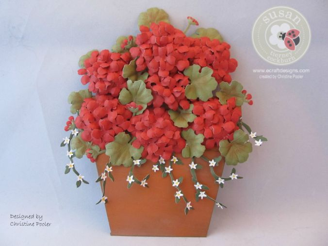 Potted Geraniums 1 08 2015