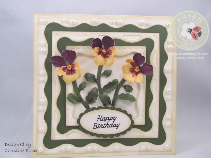 Birthday Pansies 11122015