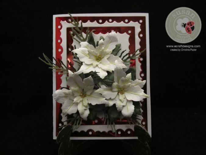 Framed Poinsettias 12142015 1