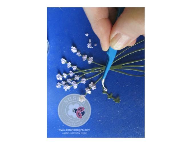 Lovely Lavender 3