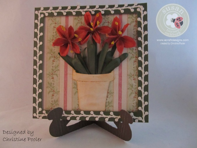 potted-and-frammed-amaryllis12016-10-29-16-38-55