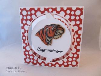 congratulations-tiger1