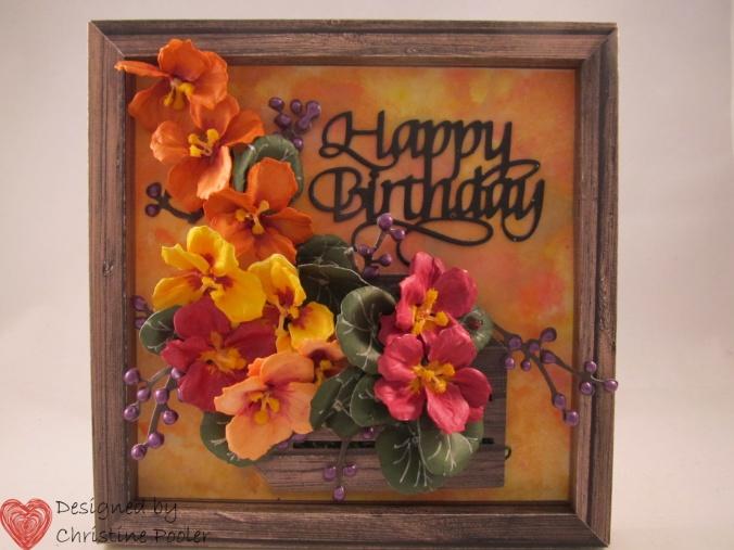 birthday nasturtiums