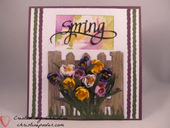 Spring Crocus with fence