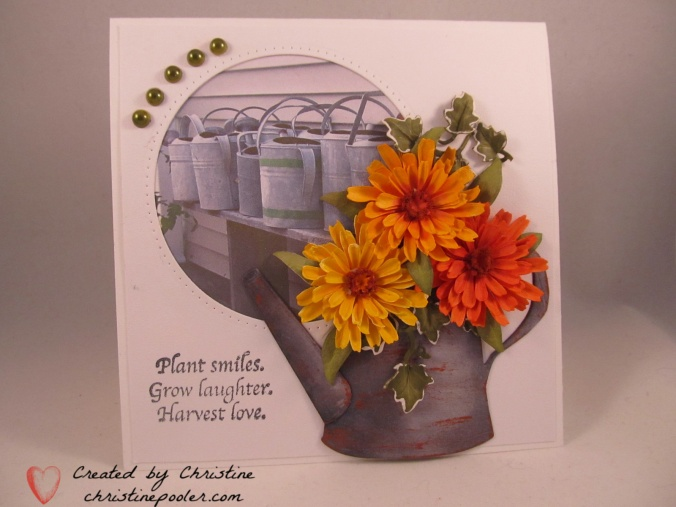 Watering Can with Calendula